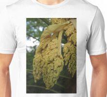 Chusan Palm Flowers Unisex T-Shirt