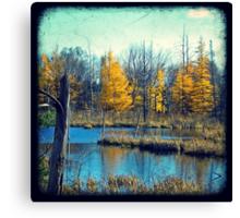 Wetlands Through The Viewfinder Canvas Print