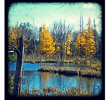 Wetlands Through The Viewfinder Photographic Print