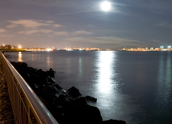 Moon Light over Brooklyn by Svetlana Sewell