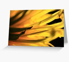 Fiery Dandelion Greeting Card