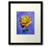 Tea Rose Framed Print