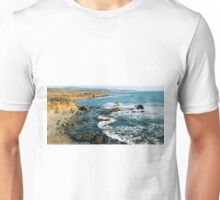 #563  California Coastline Unisex T-Shirt