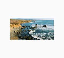 #563  California Coastline T-Shirt