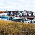 Boats on Prince Edward Island  Photoshop by Linda Jackson