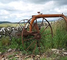 Old Farm Relic,Wigtownshire, South West Scotland by sarnia2