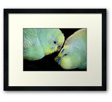 Love is in the air (2) 0836 Framed Print