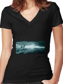 Dolphin Reef Women's Fitted V-Neck T-Shirt