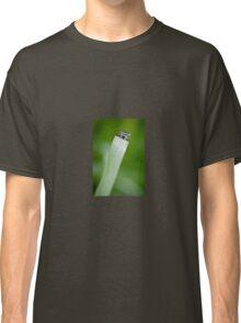 Peek-a-boo Damselfly Classic T-Shirt