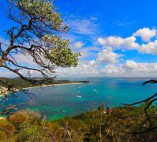 Enjoy the walk up then reflect on Nelson Bay by zhivan