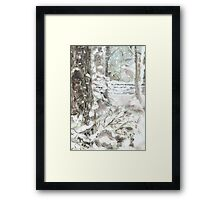 Out of Bounds - Free falling Snow Framed Print