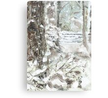Out of Bounds - Free falling Snow Canvas Print