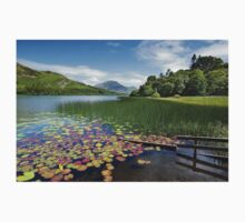 Loweswater Lake shore from Holme Wood English Lake District T-Shirt