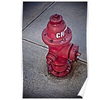 Grunge Fire Hydrant Poster