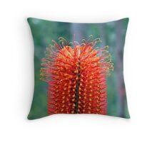 Heath Banksia (Banksia ericifolia) Throw Pillow