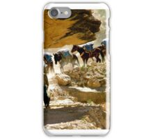 Pack String iPhone Case/Skin