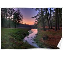 Remote Forest Lake Sunset Poster