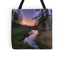 Remote Forest Lake Sunset Tote Bag