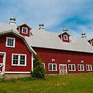 Big Red Barn by Mandy Wiltse