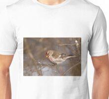 Male Common Redpoll - Shirley's Bay, Ottawa, Ontario Unisex T-Shirt