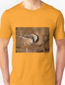 Black Capped Chickadee - Mud Lake, Ottawa, Ontario T-Shirt