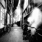 STEAMY DARK ALLEY by Scott  d&#x27;Almeida