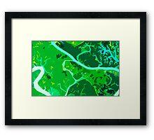 Amazon Framed Print