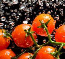 Cherry Tomato Splash 1 Sticker