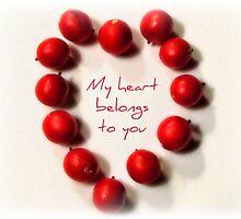 My Heart Belongs To You by Kathy Bucari