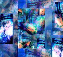 Abstract Composition – May 15, 2010  by Ivana Redwine