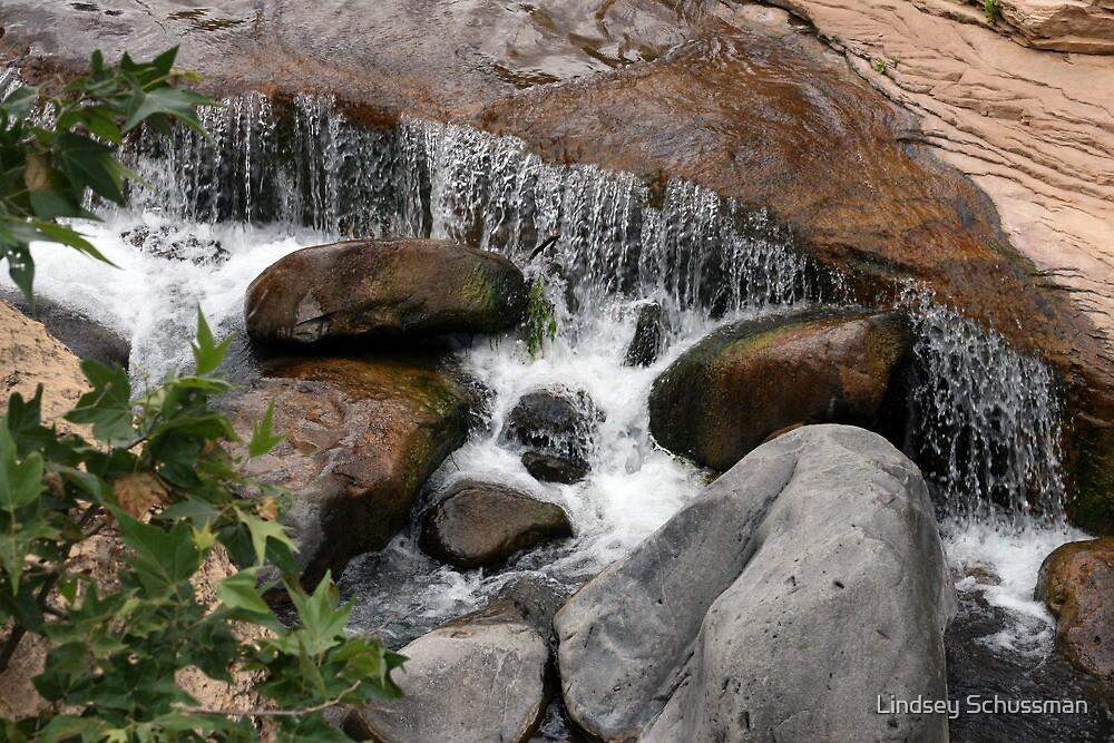 Creek - Slide Rock AZ by Lindsey Schussman