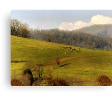 Mountain Pasture Canvas Print