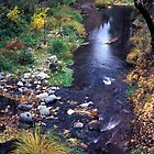 Sedona Stream by Cheryl L. Hrudka