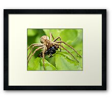 It is all mine.... Framed Print