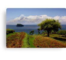 Earth Island Canvas Print