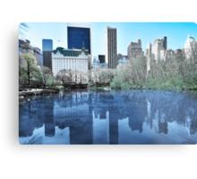 Central Park1 Metal Print