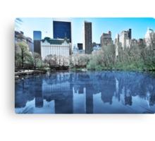 Central Park1 Canvas Print