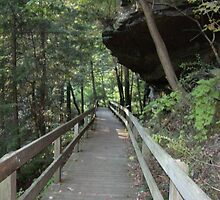 Rock overhang at Mill Creek Park by atomicseasoning