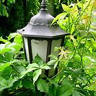 Garden lamp by ambrusz