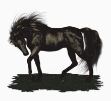 Ebony .. black stallion by LoneAngel