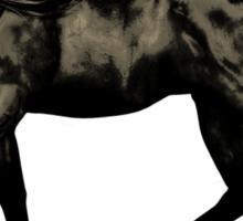 Ebony .. black stallion Sticker