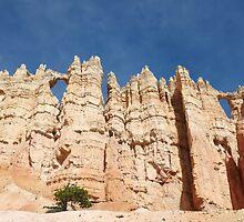 Wall of Windows, Bryce Canyon, USA by Jonathan Maddock