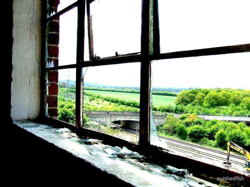 Window by mashedfish