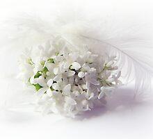 Piccolino bianca by Yool
