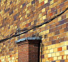 Bricks and Wires  by Ethna Gillespie