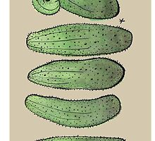 Cucumbers on brown by Yael Kisel