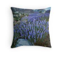 Eastern Sierra Lupine Sunrise Throw Pillow