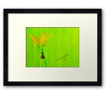 Between green Framed Print