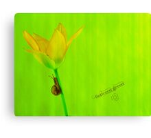 Between green Canvas Print