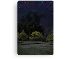Moon Shadows Canvas Print